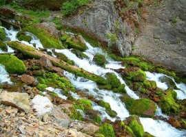 Прерывистый ручей в Афтоне (США)