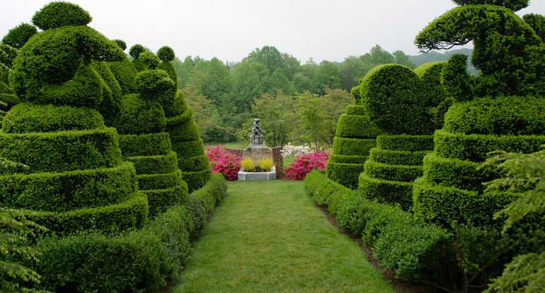 Топиарный сад Харви Ладью (США)
