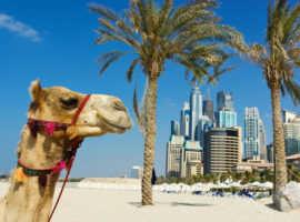 Сентябрь – лучший месяц отдыха в Арабских Эмиратах