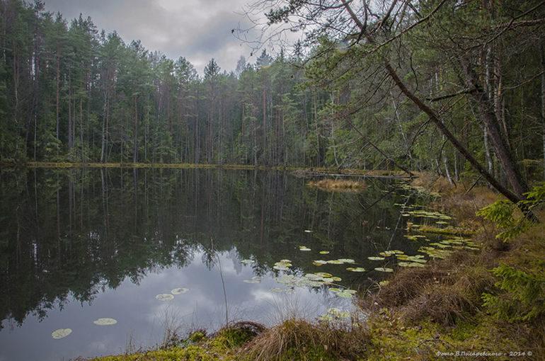 «Голубые озера» – идеальное место для любителей природы и экотуризма