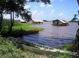 Суринам – экзотика Южной Америки