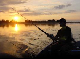 Прикормки для рыбы – хороший способ увеличить улов