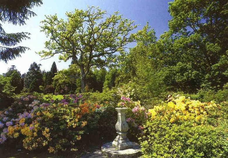 замки Шотландии парк замкок Бродик фото