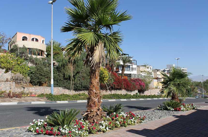 Полезные советы туристам в Израиле